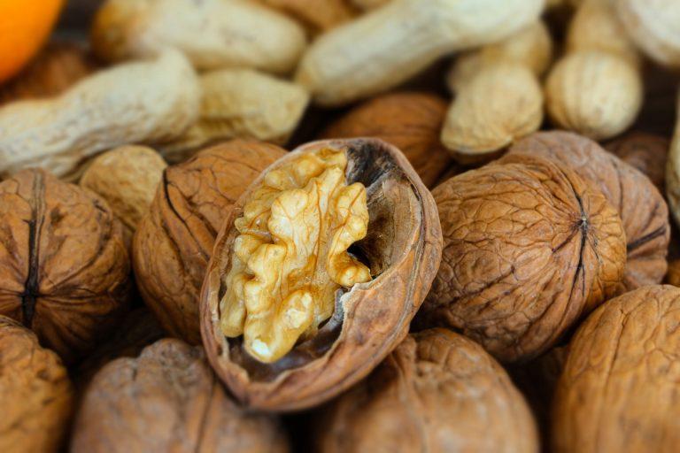 Recupero de nueces valuado en 85 millones de pesos chilenos